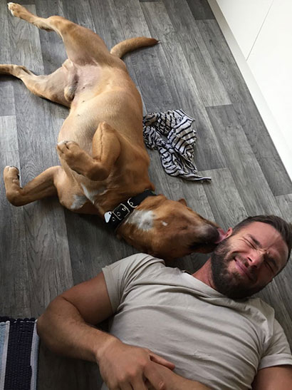 tierheime vermittelte hunde gl ckspilze hunde welpen katzen tiervermittlung freiburg. Black Bedroom Furniture Sets. Home Design Ideas