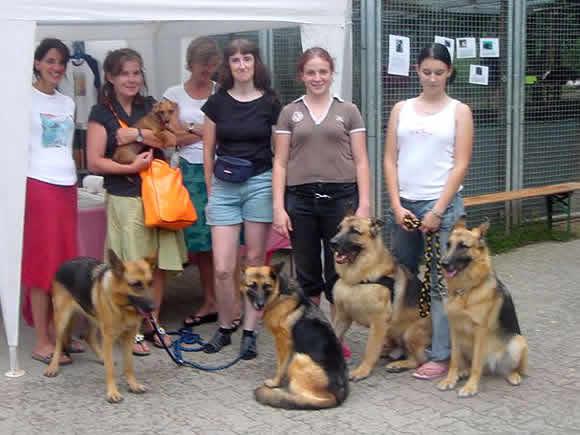 Tierheim Tag Der Offenen Tür Ludwigsburg Hunde Welpen