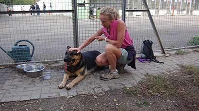 Hundepension freiburg umgebung